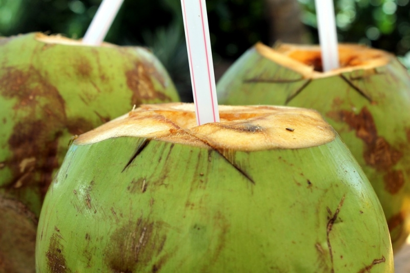 Noticia cinco-beneficios-da-agua-de-coco-para-a-saude-durante-o-periodo-de-calor-intenso